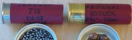 Low Brass vs High Brass