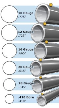 Shotgun Bore Size