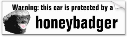 honeybadger_car_anti_theft_humor_bumper_stickers-rf5ea83562c3e4133b6fc858be49e1456_v9wht_8byvr_512