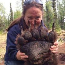 giant bear paw