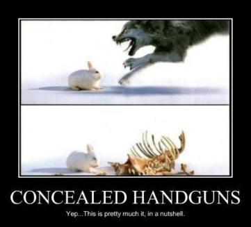 concealed handgun meme