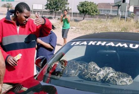 Car_Security_in_Africa