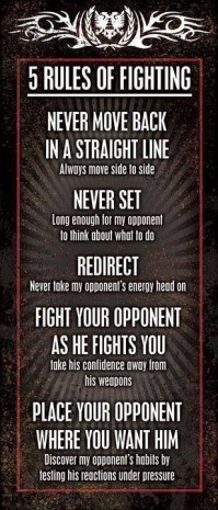 Five Rules of Fighting