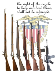 evolution of the rifle