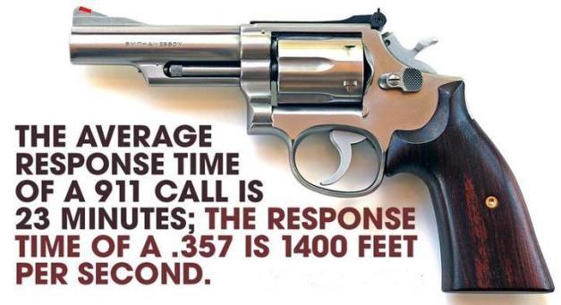 .357 Magnum Meme