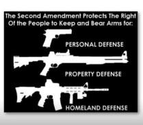 Homeland Defense