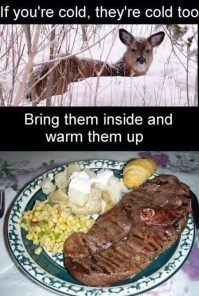 if you are cold, they are cold too. Bring them inside and warm them up