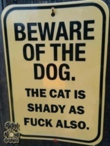 Beware of the Dog. The Cat is Shady Also.