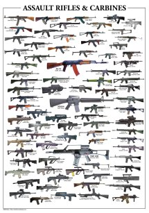 Assault Rifles & Carbines