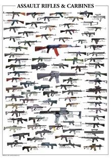Assault Rifles & Carbines