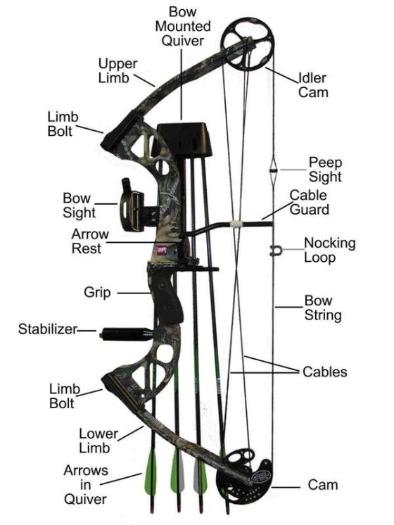 Parts of a Compound Bow