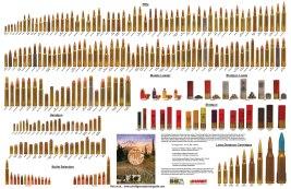Rifle Bullet Comparison Chart
