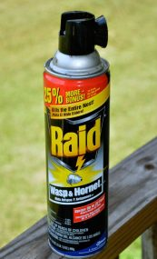 raid_wasp_hornet_spray