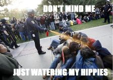 pepper spray hippies