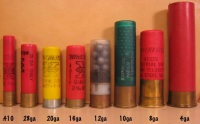 Shotgun Shells Comparison