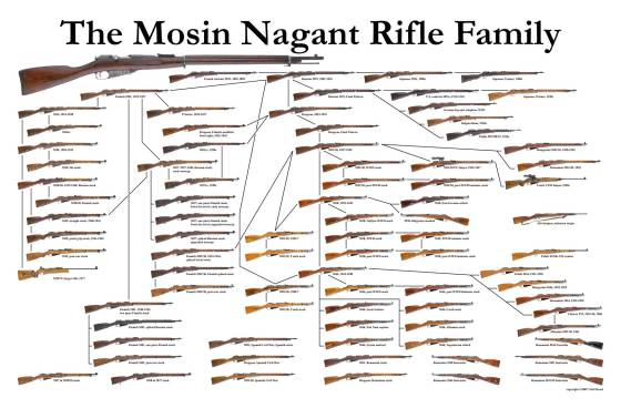 Mosin-Nagant-Rifle-family-chart-tree-linear