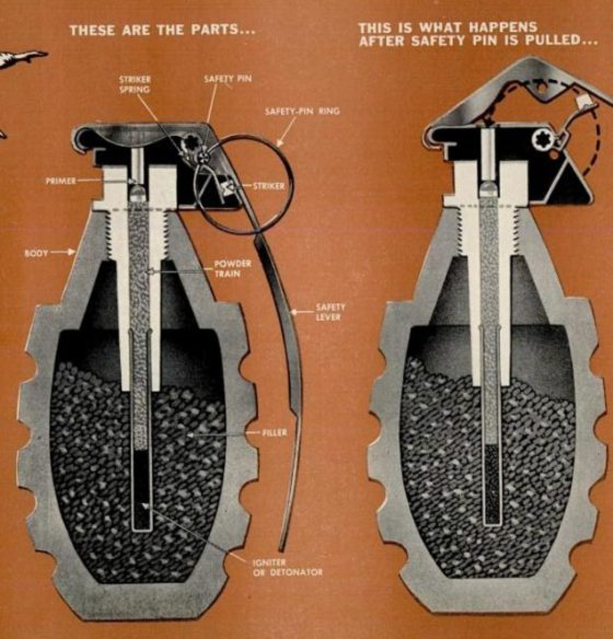 Hand-Grenade-Cutaway-Drawing-1951