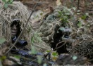 Camoflage Soldiers