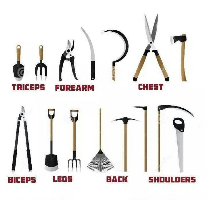 hand tool names. gear \u0026 tools. \u201c hand tool names