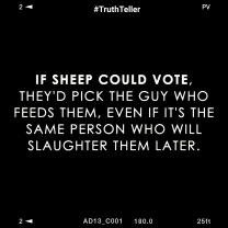sheep to the slaughter meme