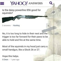 daisy 856 for squirrel hunting