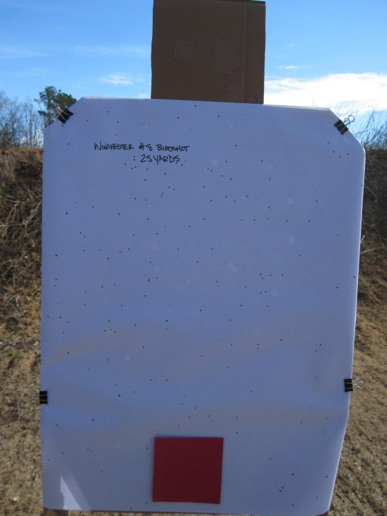 Mossberg Shockwave, Winchester #8 Birdshot, 25 Yards